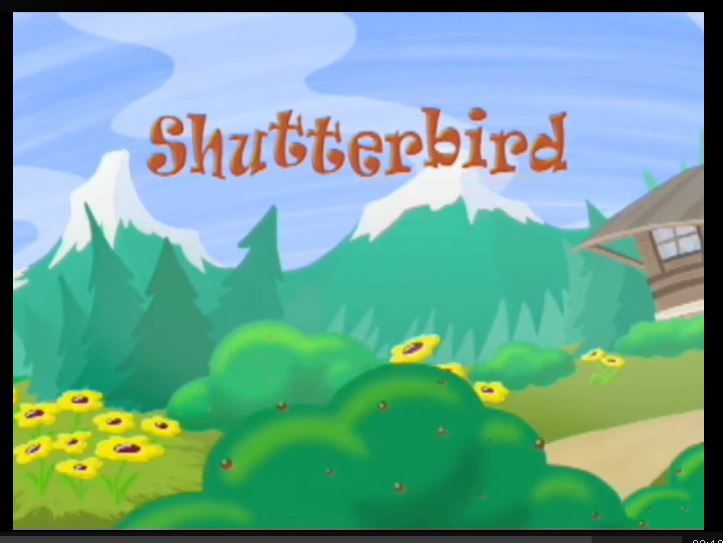 shutterbird