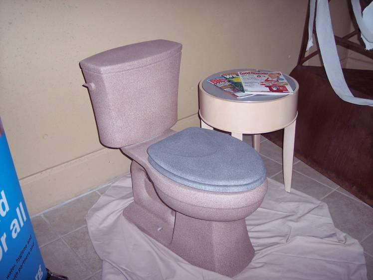 stone toilet2