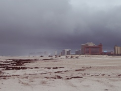 arlene beach