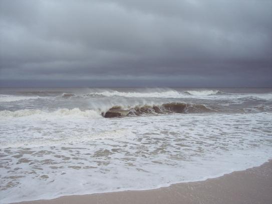 arlene wave